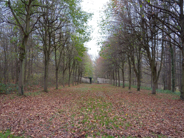 Hackaton dans la forêt et le Château d'Ecouen © Mosquito