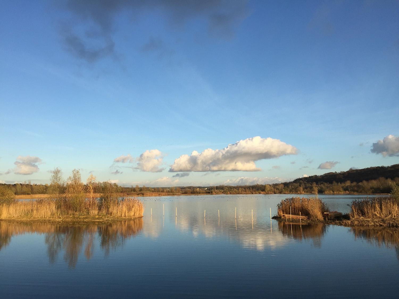 Réserve naturelle régionale du Grand Voyeux ©Cuesta