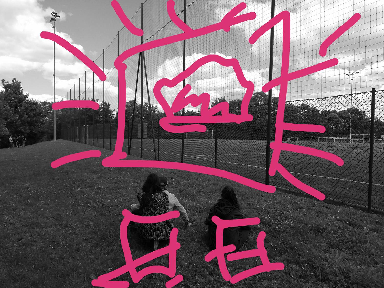 Ciné en plein air #ParcdesHauteurs #Romainville #EstEnsemble #PlateauPhoto