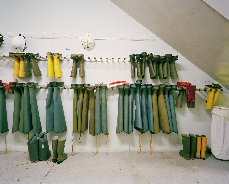 Protozoaires - Station d'épuration de Beaurade © Sylvain Gouraud